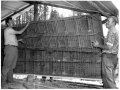 1972-poultry-barn-cages-al-fagg--harry-levittbw_w