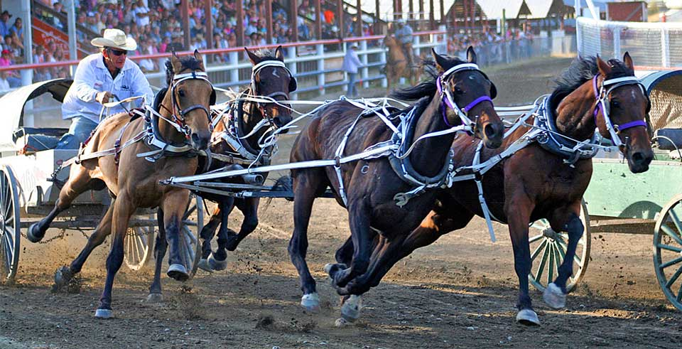Mark Your Calendars For the 67th Annual North Thompson Fall Fair & Rodeo